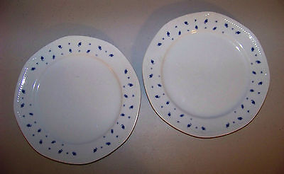 Mitterteich Set Of Two Dinner Plates With Blue Rose Design