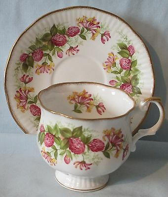 Queens Rosina China Hampton Style Wild Flowers Cup and Saucer Set Hops