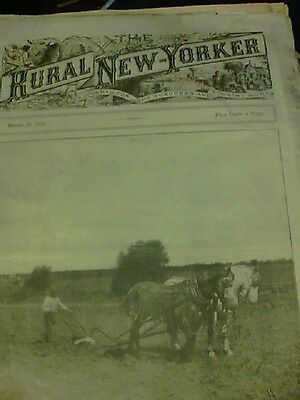 1915 The Rural New Yorker  a journal for the suburban and country home ed