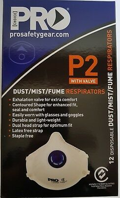 24 x P2 Face Dust Mask Respirator Valve Painting Welding Fumes Disposable
