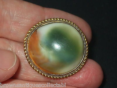 ANTIQUE VICTORIAN LARGE GOLD FILLED RARE OPERCULUM SHELL CATS EYE BROOCH PIN OLD
