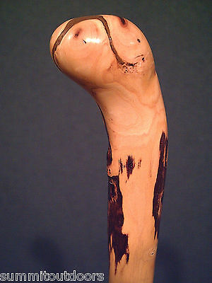 ROOT BALL HANDLE SHILLELAGH CANE WALKING STICK THE BEST THAT NATURE CAN GROW
