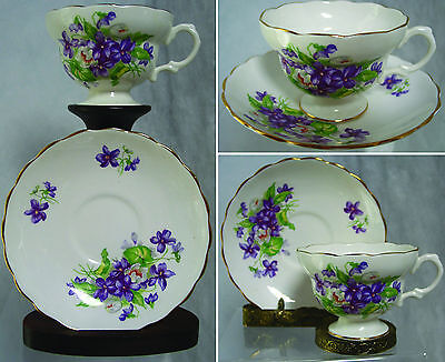 BEAUTIFUL VINTAGE ROYAL CROWN CUP AND SAUCER, ENGLAND,FLORAL,VIOLETS