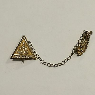 Job's Daughters Jewelry Gold Filled Member Pin with Cornucopia Pin Guard
