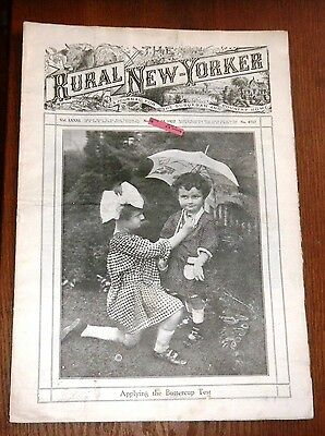 VTGE 1922 Rural New Yorker Journal for the Suburban and Country Home Newspaper