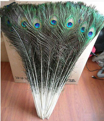 wholesale 50 PCS  32-36 Inch  beautiful natural peacock feathers eyes #10