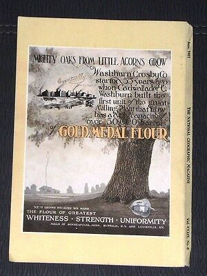 Vintage 1921 Gold Medal Flour Advertisement Ad