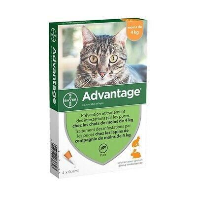 Advantage Anti-puces pour Chat (<4 kg) - 4 pipettes
