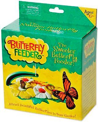 Insect Lore Butterfly Feeder - New