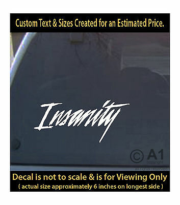 Insanity funny 6 inch vinyl decal people crazy car truck home more swp3_283