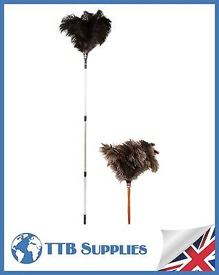 "MULTI PACK Genuine Dustease Premium Ostrich Feather Duster - 20""+ 48-90"""