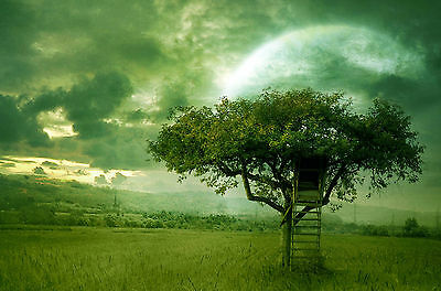 Framed Print - Dream World Tree House in a Green Field (Picture Poster Art)
