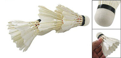 CF White Goose Feather Badminton Shuttlecock 3pcs W Carboard Cylinder