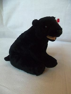 "TY Beanie Babies 6"" (sitting) Black Bear  ** CINDERS **  6th Gen New w/ Tag"