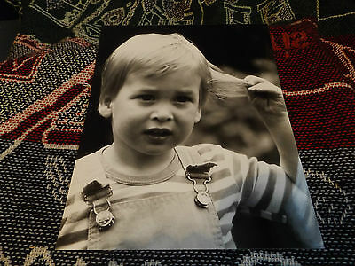 10 x 8 ROYAL PHOTO - A YOUNG PRINCE WILLIAM PLAYING WITH HAIR