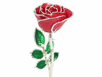 Sterling Silver Trimmed Red Rose 8 Inch (Free Anniversary Gift Box)