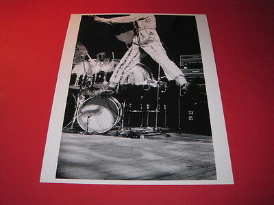 THE WHO  10x8 inch lab-printed glossy photo P/2890