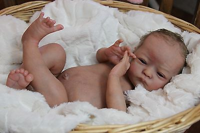 """Reborn doll kit """"Will"""" by Natalie Scholl SOLD OUT HTF"""
