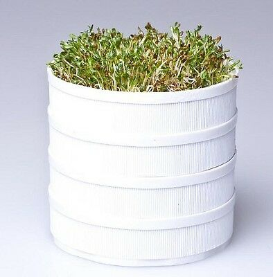 Qsprouter, Easy Personal Seed Sprouter, for Home & Office, BPA Free, White Color