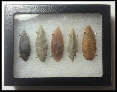 Stone Age Ancient Neolithic Stone Arrowheads In Display Case!