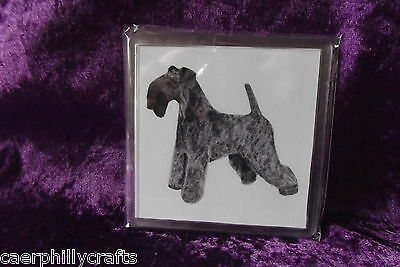 Kerry Blue Terrier Square Coaster by Curiosity Crafts (B)