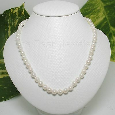 6-6.5mm White Genuine Akoya Cultured Pearls Necklace Alloy Trigger Clasp TPJ