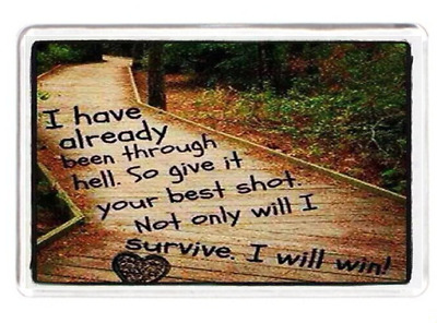 Been Through Hell Hard Path Best Shot Will Win Life Quote Gift Fridge Magnet