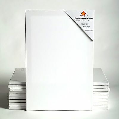 "10 ART-STAR STRETCHED CANVASES | ~20x28"", 100% cotton 