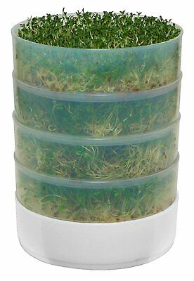 Indoor  4-Tray Kitchen Seed Sprouter
