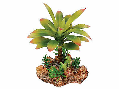 Desert Plant with Rock Base Reptile Terrarium Vivarium Ornament Decoration