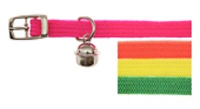 Cat Collar - Flourescent Nylon with Bell