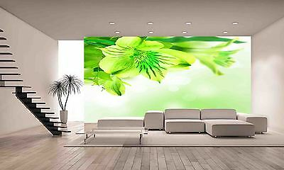 Green Flower Lily Wall Mural Photo Wallpaper POSTER GIANT WALL DECOR Free Glue