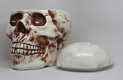 Skull With Fracture Wounds Ceramic Cookie Jar Kitchen Accessory Decor Top Lid