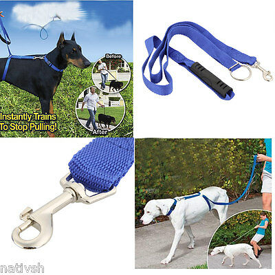 Dog Leash Instant Trainer for Dogs Pet Rope Walking Training 30lbs 6ft
