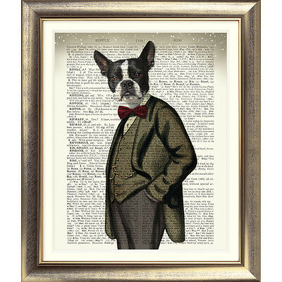 ART PRINT ON ORIGINAL ANTIQUE BOOK PAGE Dog BOSTON TERRIER Picture DICTIONARY