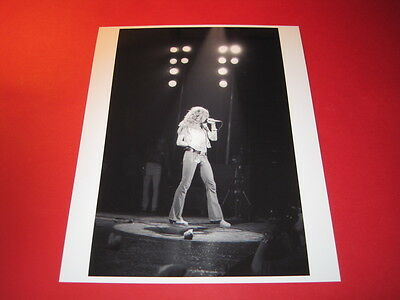LED ZEPPELIN ROBERT PLANT  10x8 inch lab-printed glossy photo P/3762