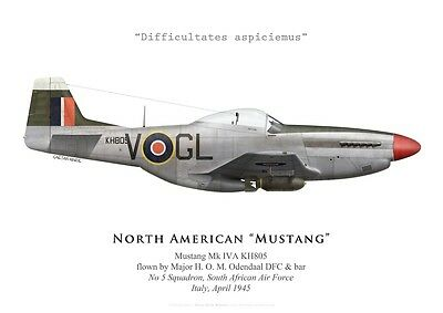 Print Mustang IVA, Maj. Odendaal DFC & bar, No 5 Squadron SAAF (by G. Marie)