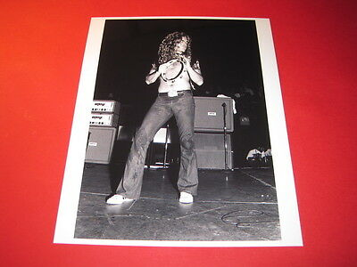 LED ZEPPELIN ROBERT PLANT 10x8 inch lab-printed glossy photo P/4109