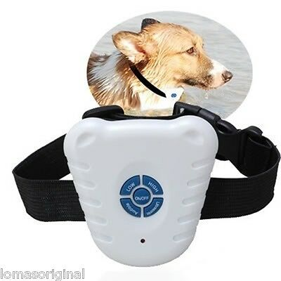 Collar Perro Ladridos Ultrasonidos Ideal Para Adiestramiento Anti Ladridos