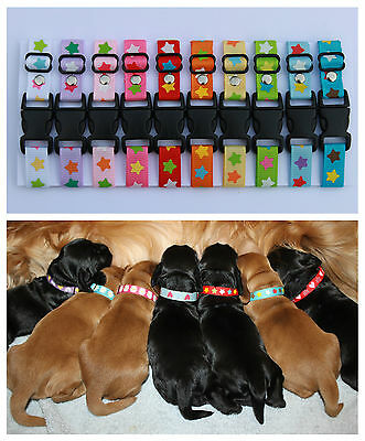 Sets of Puppy ID Whelping Collars Stars Choose Your Own Colours Identification