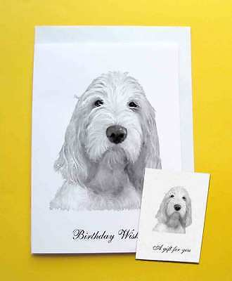 Italian Spinone Dog Large A5 Birthday Card & Gift Tag with choice of 5 verses