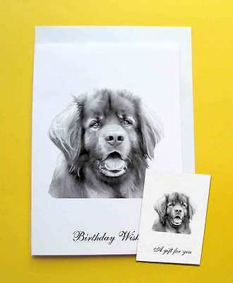 Leonberger Dog Large A5 Birthday Card & Gift Tag with a choice of 5 verse