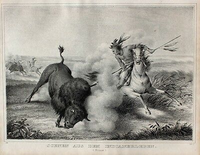 Indianer Natives USA Sioux Jagd Hunt Bison Speer Reiter Krieger Steppe Dakota
