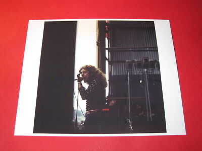 LED ZEPPELIN ROBERT PLANT 10x8 inch lab-printed glossy photo P/4644