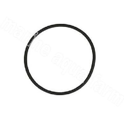 Phosban 550 Replacement O Ring, Phosphate Marine Aquarium Reef