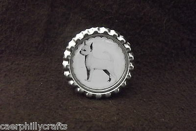 S/C Chihuahua Dog Show Ring Clip by Curiosity Crafts