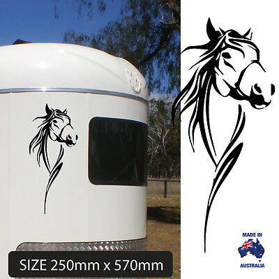Large Horse  Decal Ute 4Wd Horse Float Truck