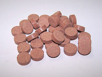 Krill Stick-On Tablets - Tropical Community Fish, Cichlids etc.