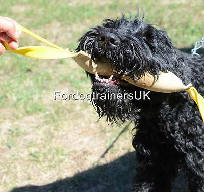 Dog Bite Tug, Genuine Leather | Dog Bite Training Tool with Handle(s) | UK best