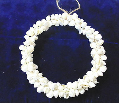 """8""""  Real Naturall Wired  Wreath Of Rose Clams Beach Decor Tropical"""